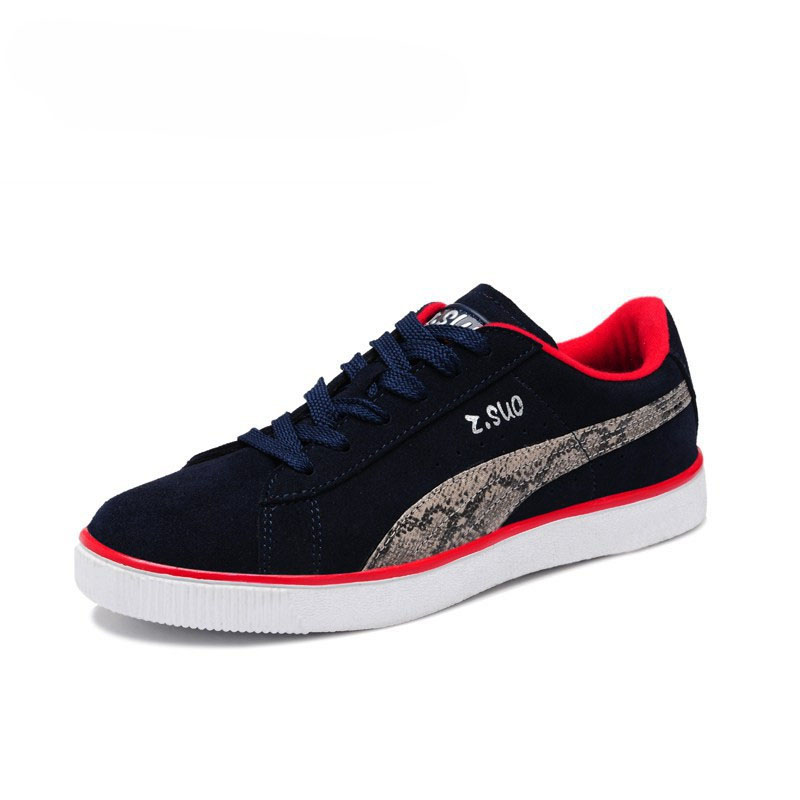 canvas shoes ZS521